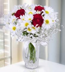 Vazoda Kırmızı Güller vePapatyalar